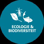 ecologie-biodiversiteit_Geofoxx