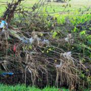 Plastic in de natuur_Geofoxx