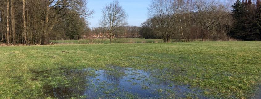 waterhuishoudkundig plan_Leuriks-Oost_Geofoxx